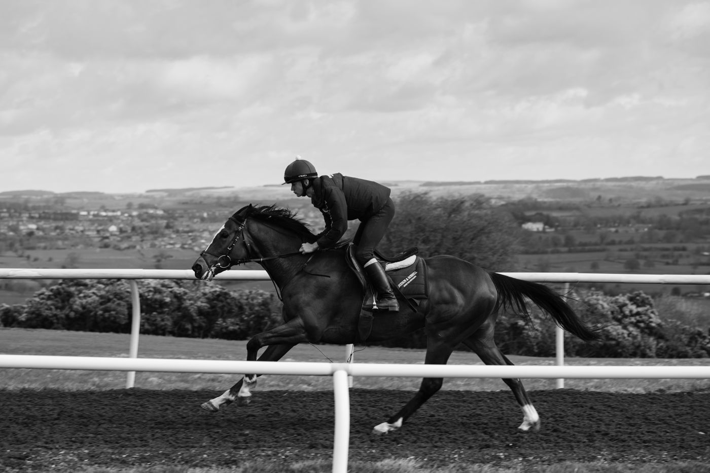 Working on the Gallops